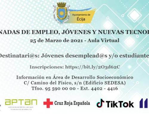 II JORNADAS DE EMPLEO, JOVENES Y NUEVAS TECNOLOGIAS AULA VIRTUAL